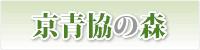 京青協の森(京都木材青年経営者協議会)